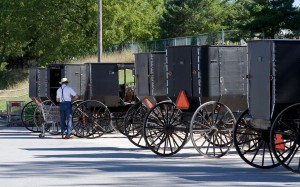 amish carriage sutter 1