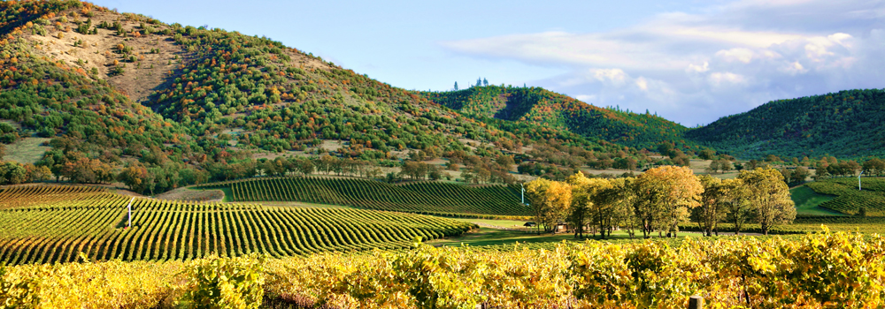 how to get to napa valley from san francisco